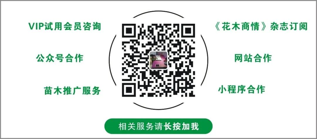 苗木网站小程序推广合作
