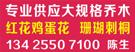 广东省中山市小榄伟记花木场