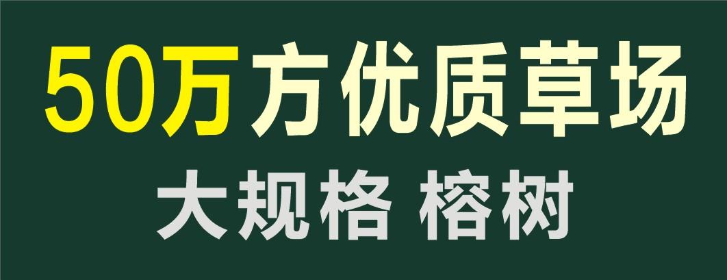 中山市恒绿农业有限公司(中山高富草业园艺工程部)