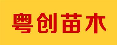广州粤创苗木