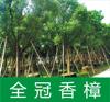福建省漳州万樟园园林有限公司