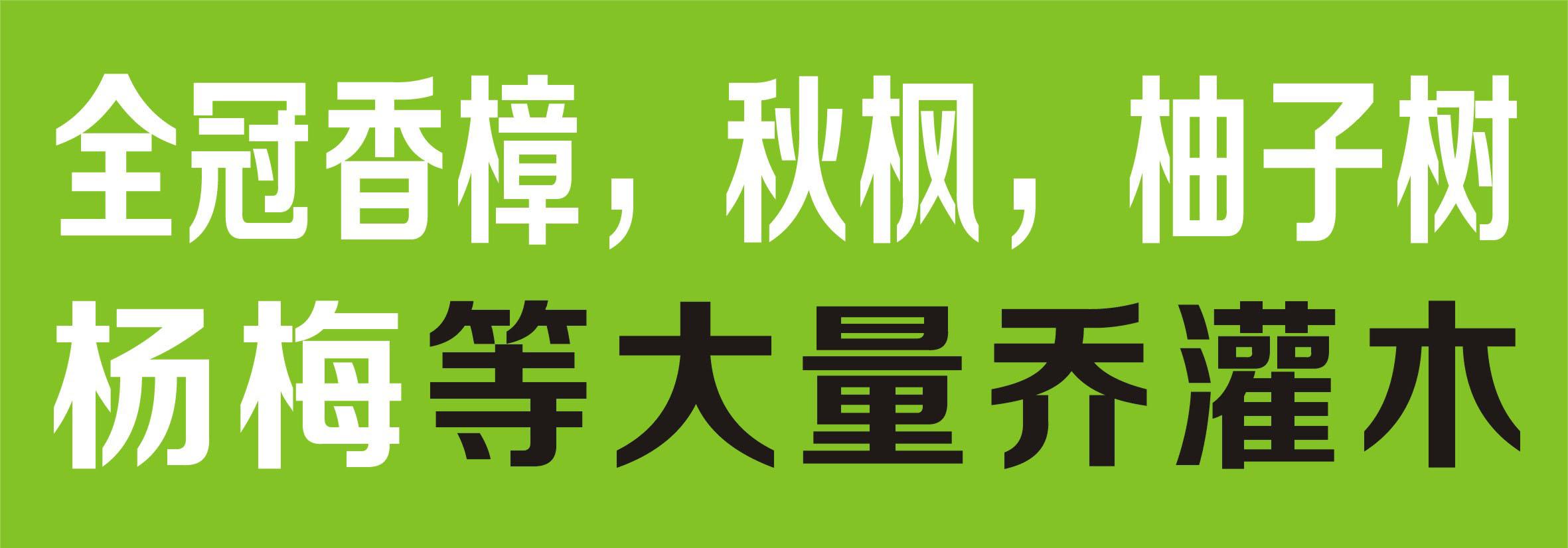 广州全意花卉种植场