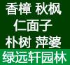 清远市绿远轩苗木基地(原:清远绿远花木场)