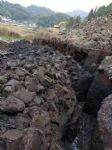 泥碳土图片